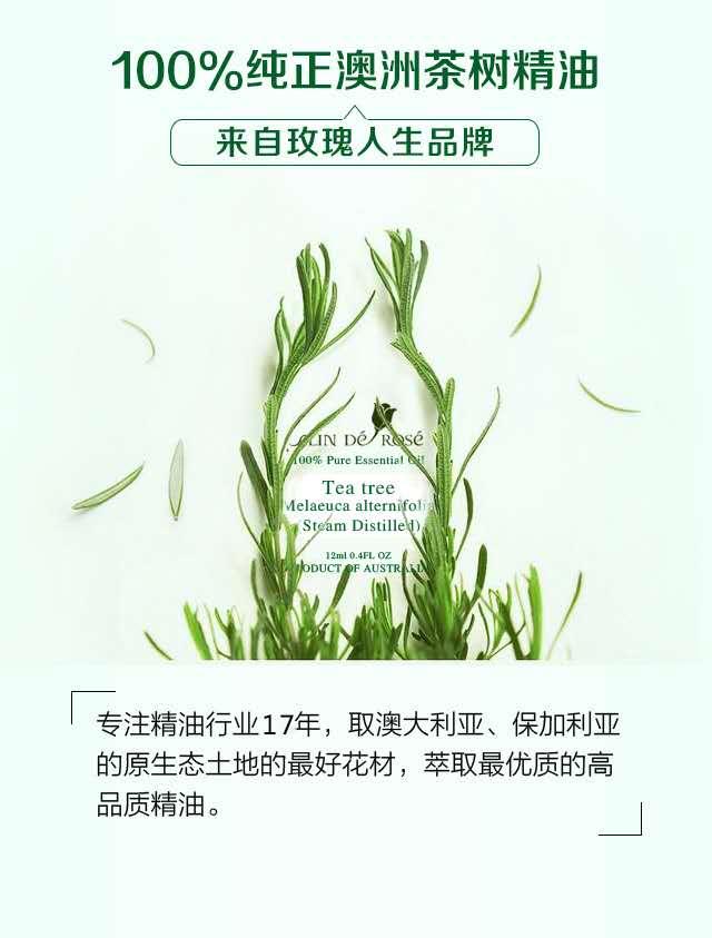 茶树精纯精油-微信图片_20190605151358