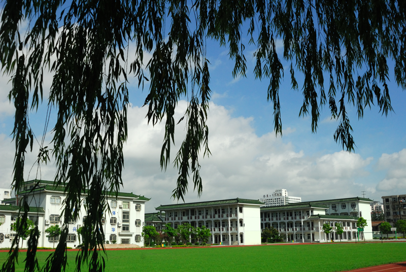 校园风貌06