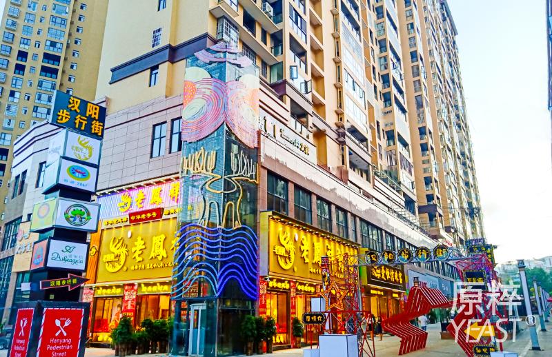 汉阳步行街图片-组1258