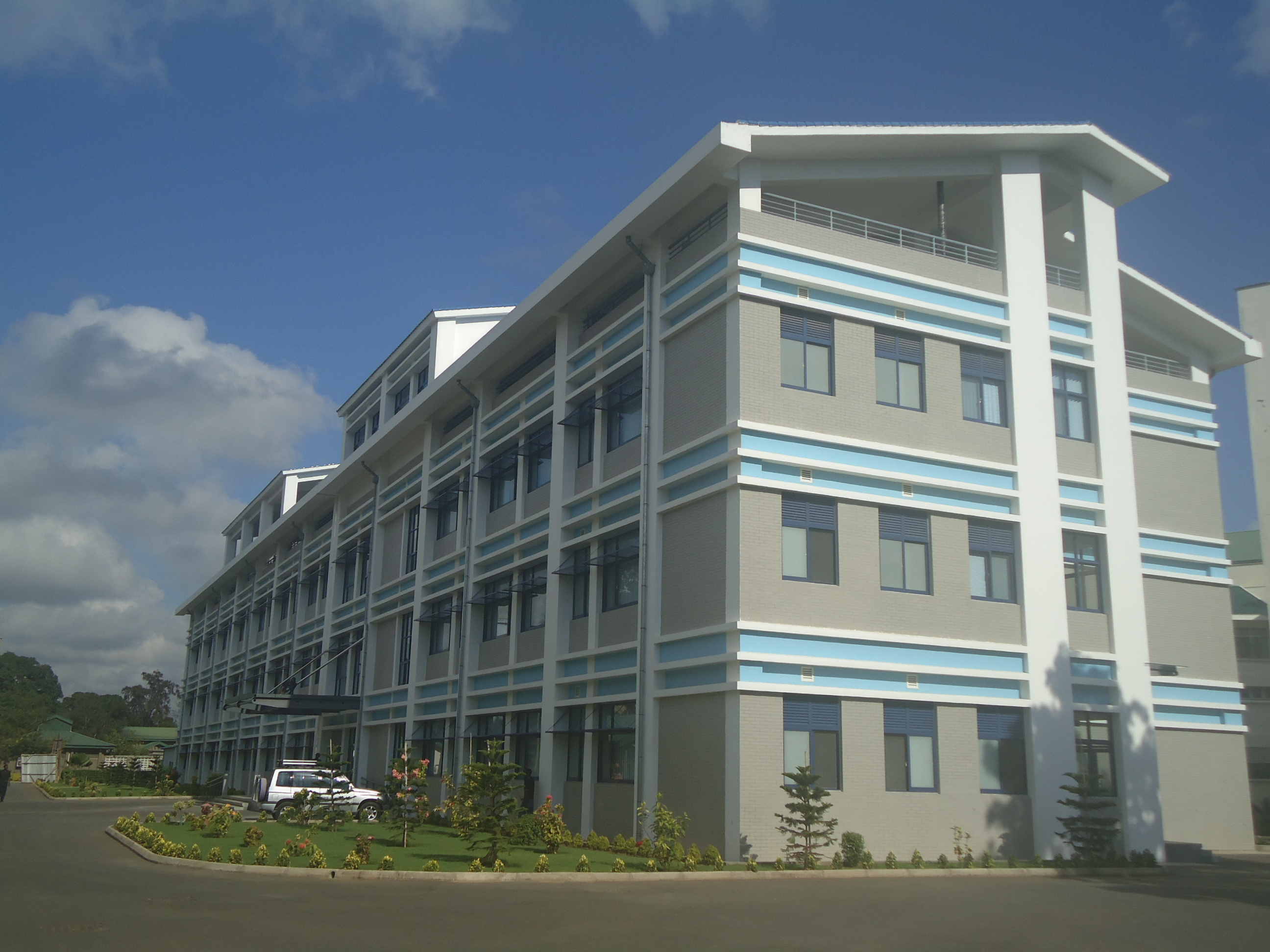 Tanzania Cardiac Surgery Training Center Project