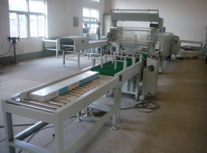 Automatic packing line 1