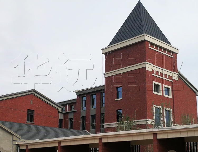 国际学校1