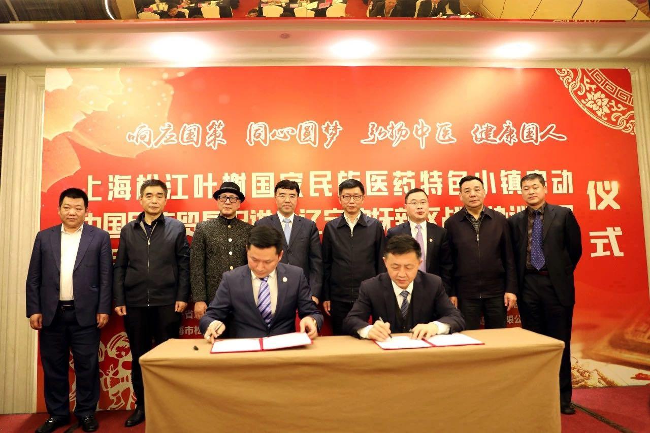 上海松江叶榭国家民族医药特色小镇启动仪式