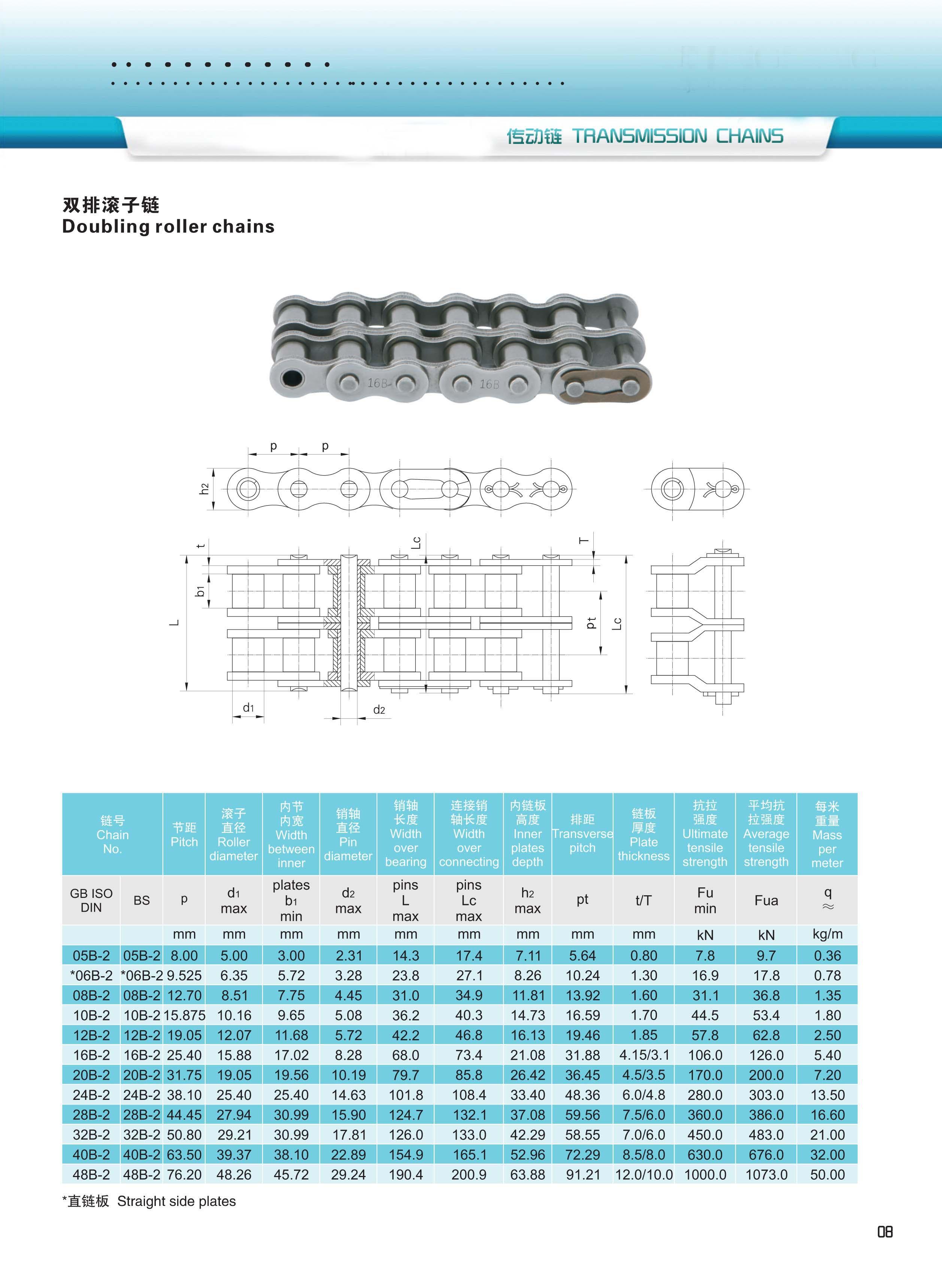 产品上传-8-AB型标准链条-XINYUCHAIN-14