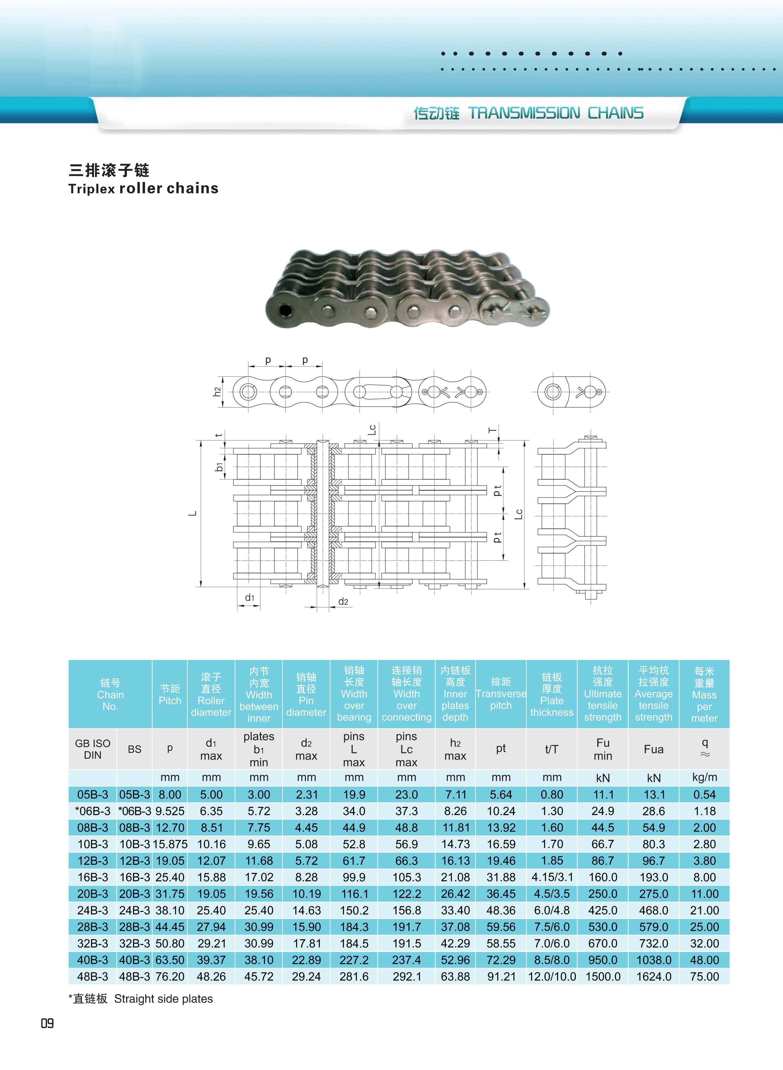 产品上传-8-AB型标准链条-XINYUCHAIN-15