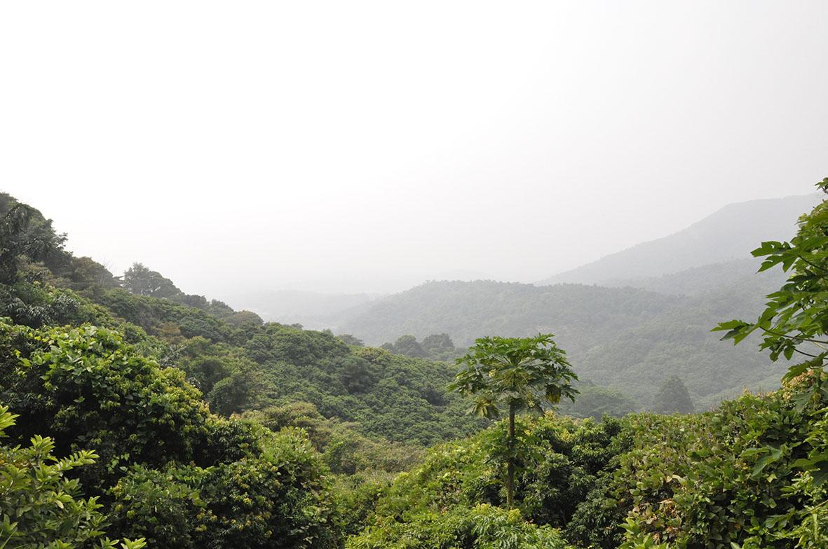 9狮子峰远景