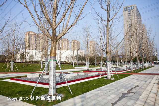 幸福公园5