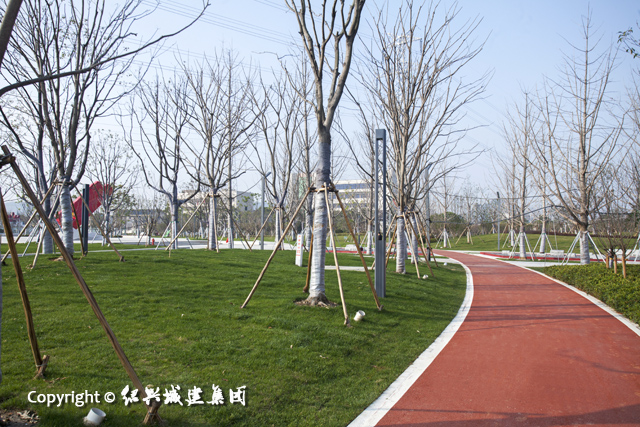 幸福公园6