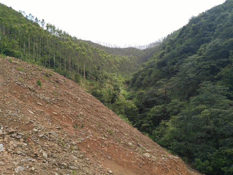 沿溝、順坡排土,形成泥石流物源