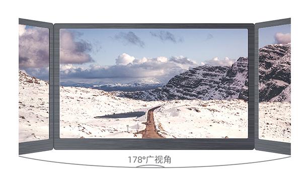 便携式显示器的面板类型