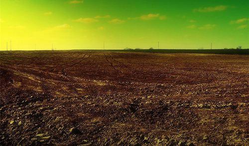 602土壤酸化1