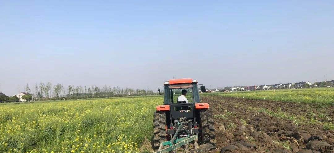 618有機肥化肥配合