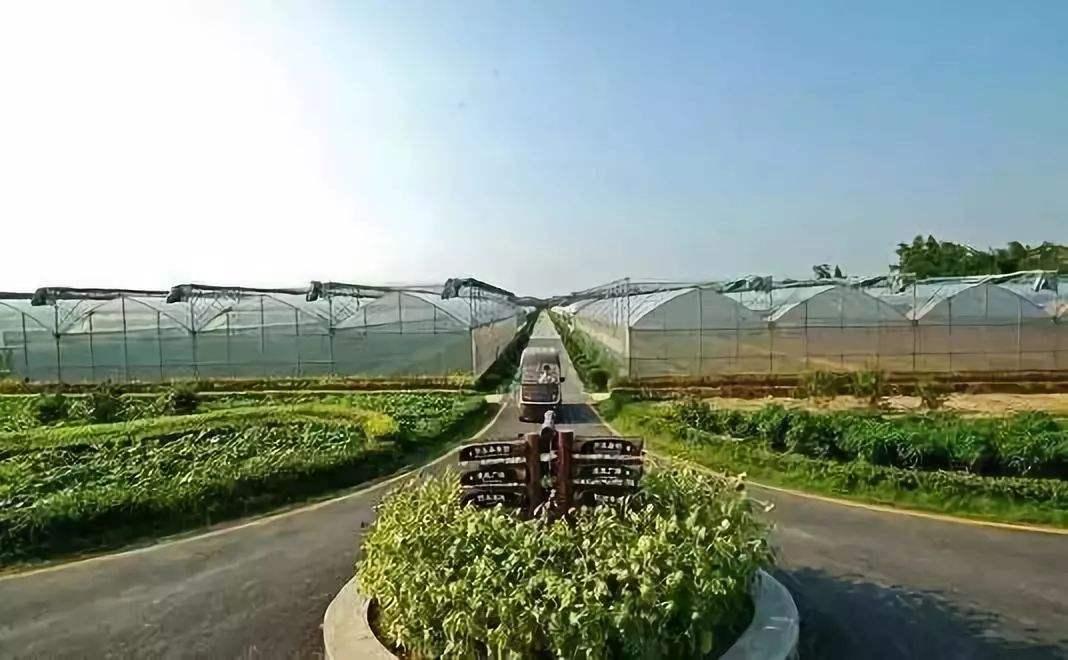 629現代農業1