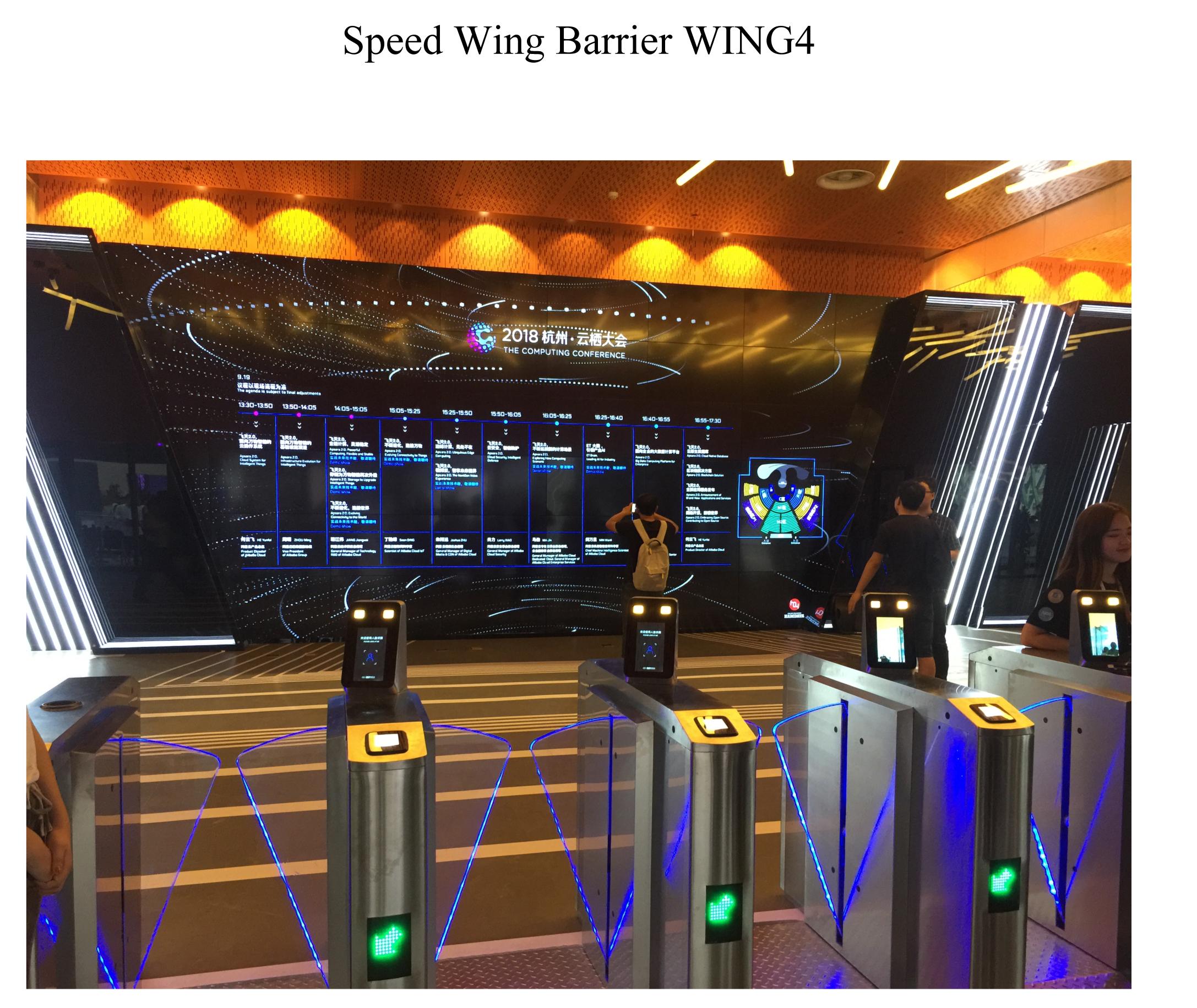 Wing4-1