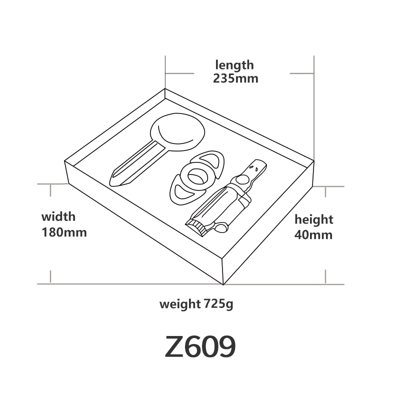 Z609英文