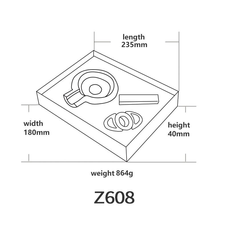 Z608英文