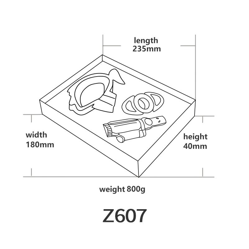 Z607英文