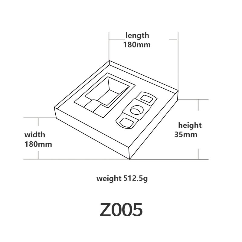 Z005英文