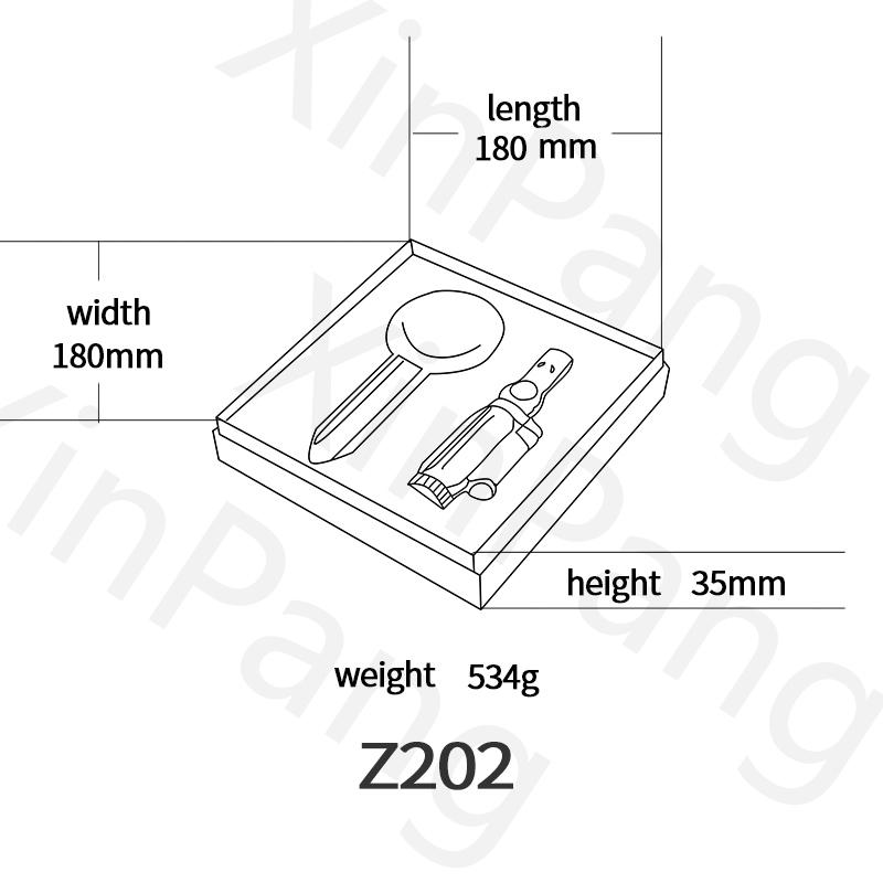 Z202英文版