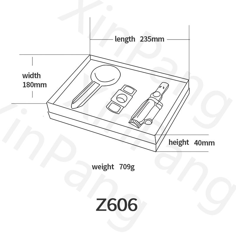 Z606英文版