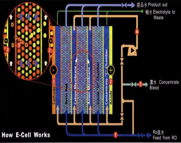工业反渗透EDI超纯水设备-EDI的工作原理-EDI的工作原理