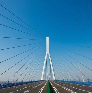 沌口长江公路大桥-2