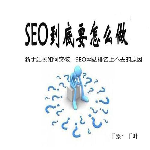 新手站长如何突破,SEO网站排名上不去的原因