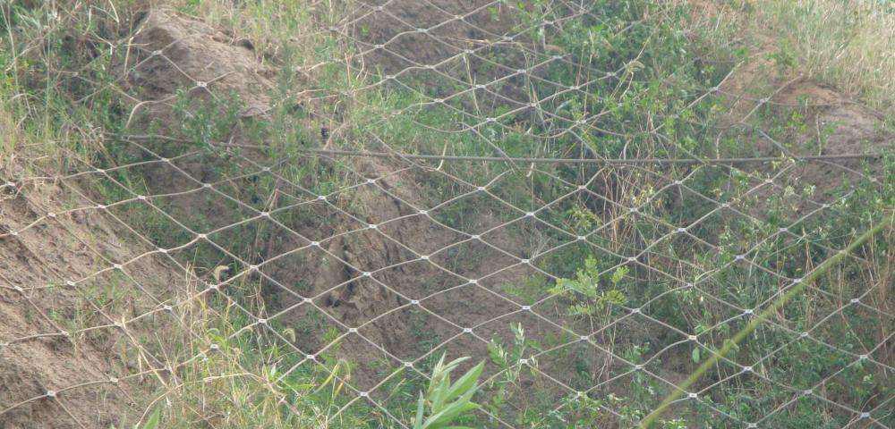 主动边坡防护网5