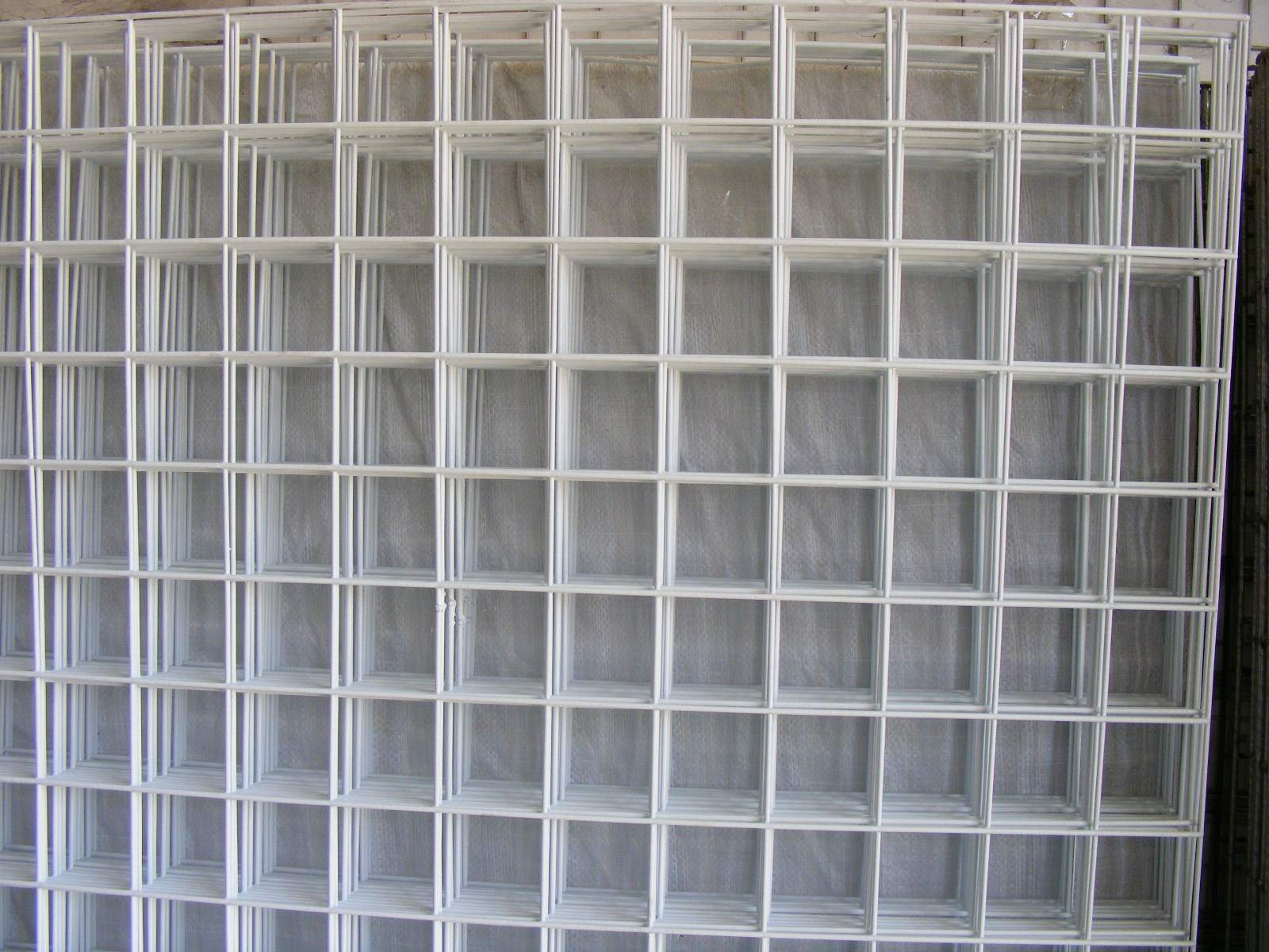 浸塑电焊网2