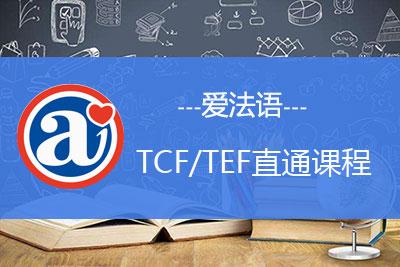 TCF考试