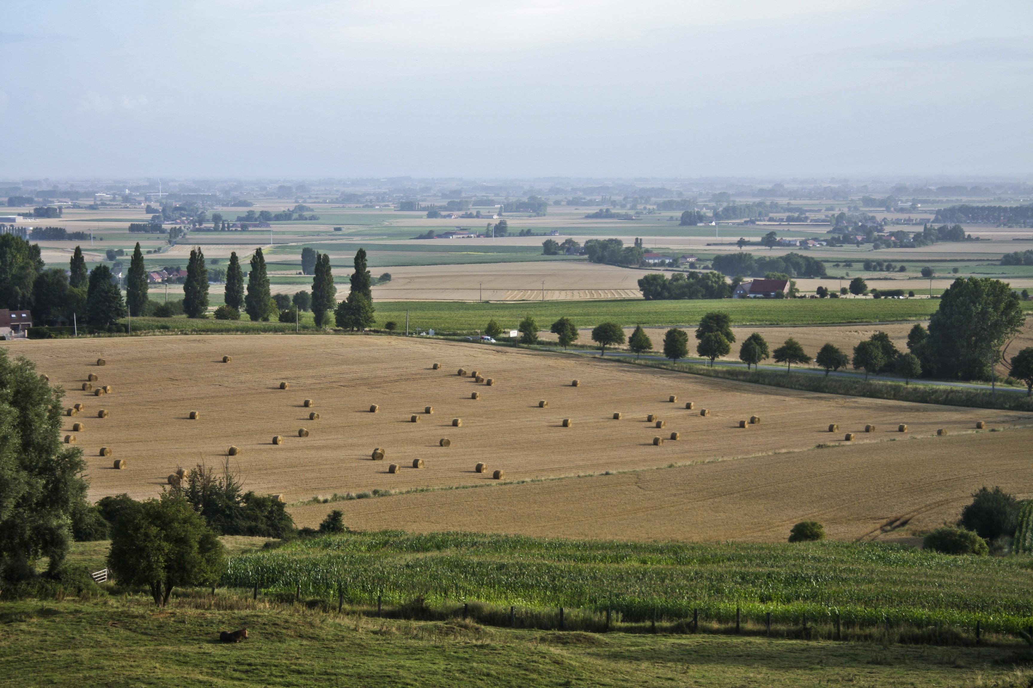 farming-france-french-harvest-fe454f6ea2003bd3dab5e66e03431b9a