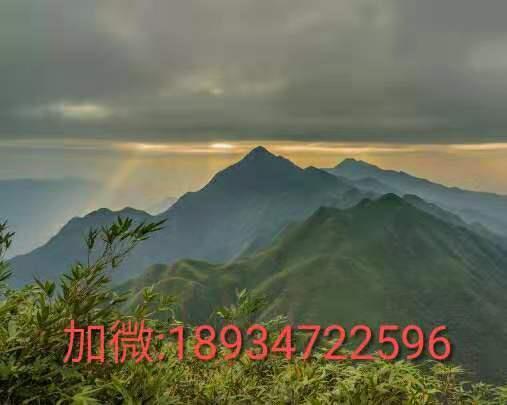 微信图片_20190918212345