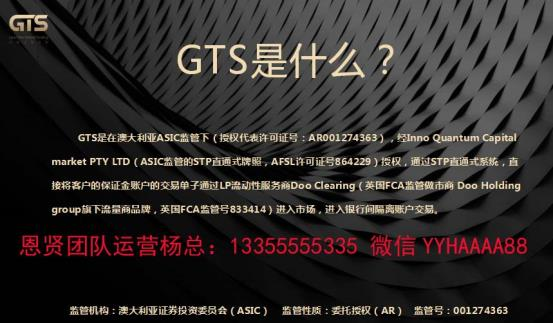 GTS外汇平台 杨总
