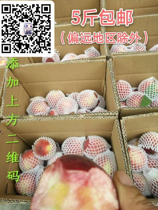 微信图片_20200501164851.jpg