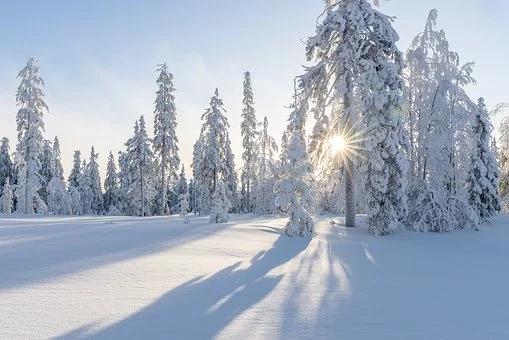 winter-4830285__340