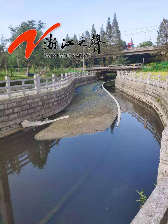 1太恶心!温州鹿城多河道水体出现黑臭反弹