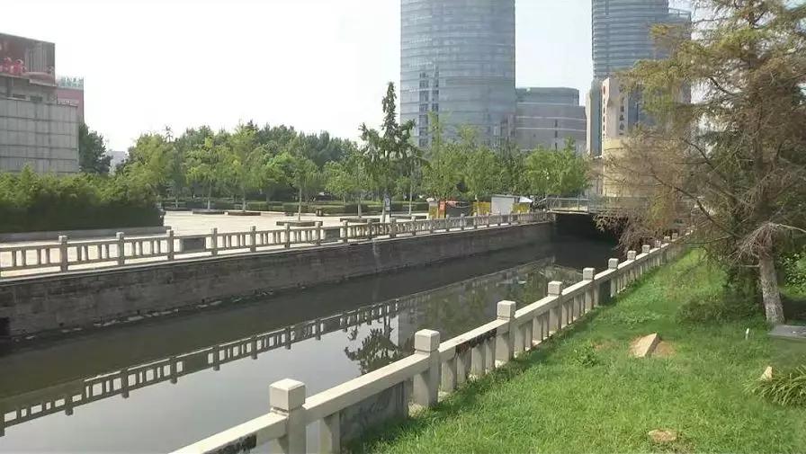 谁来管管?龙尾河变成臭水河,河面上还漂着死鱼6