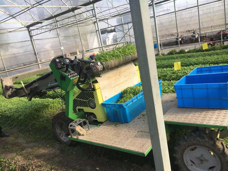 上海葉菜收獲機