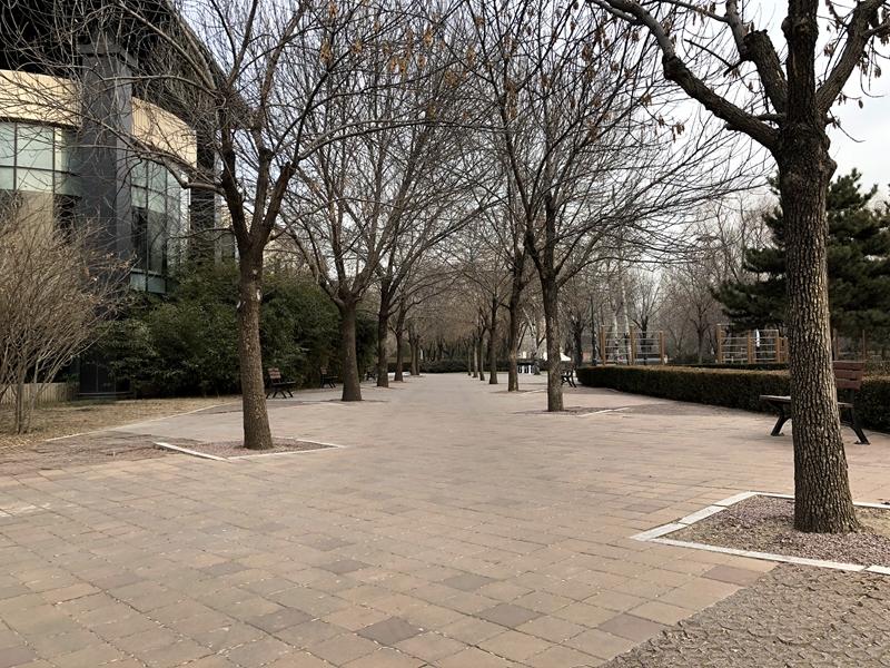 朝阳公园4