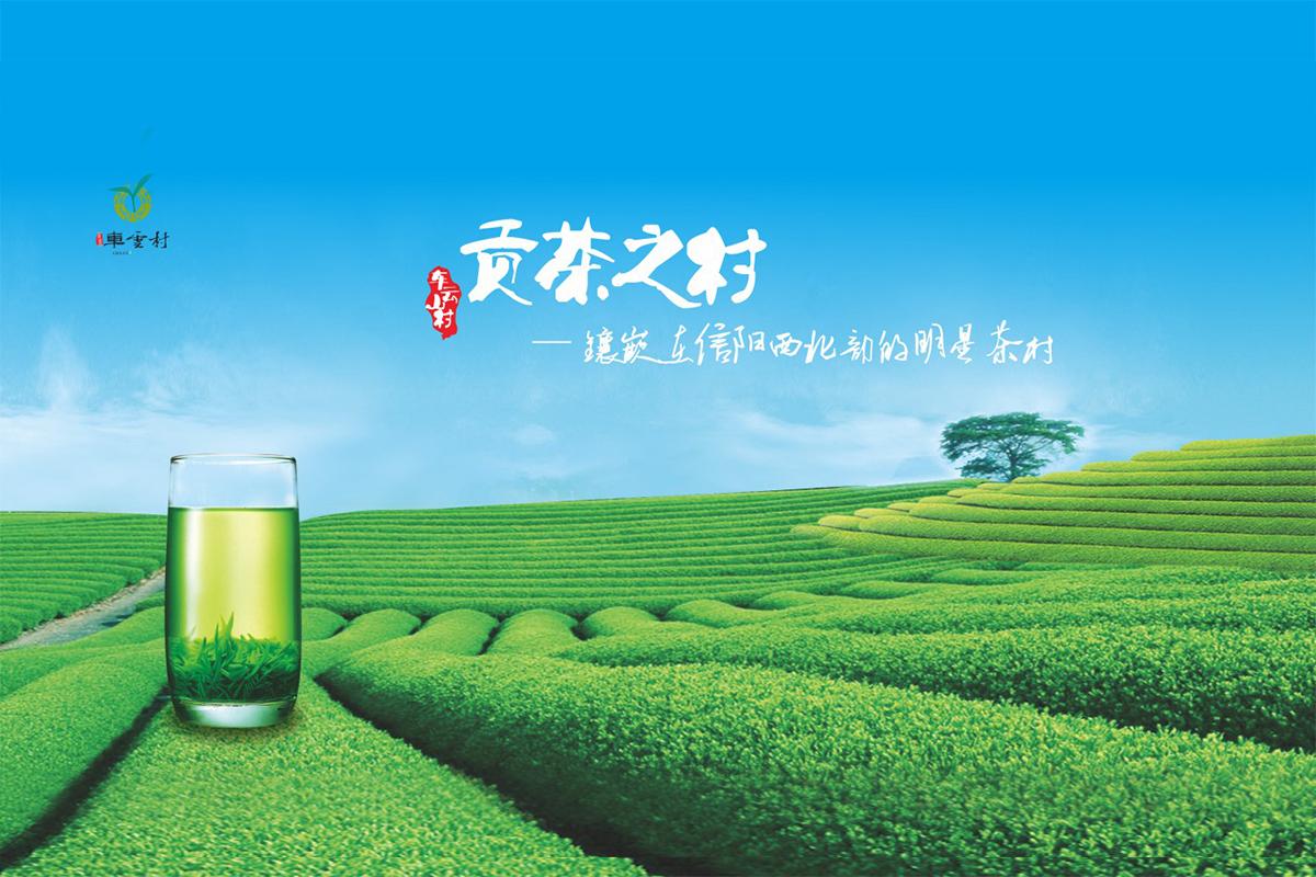 车云山村茶叶包装设计-5