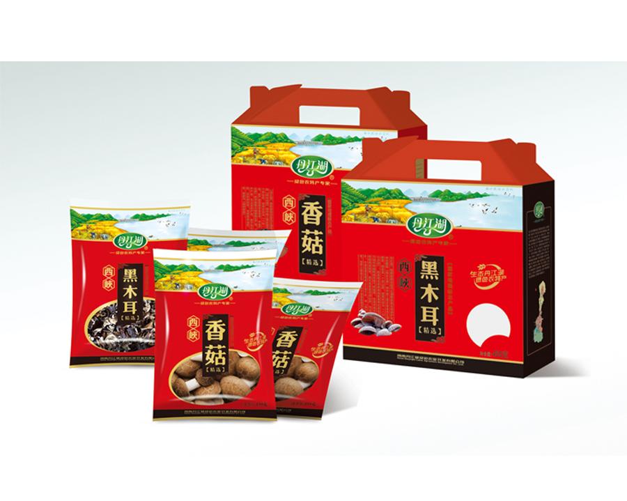 丹江湖LOGO包裝VI設計-27