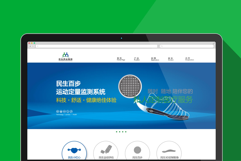 民生集团网站建设网页设计