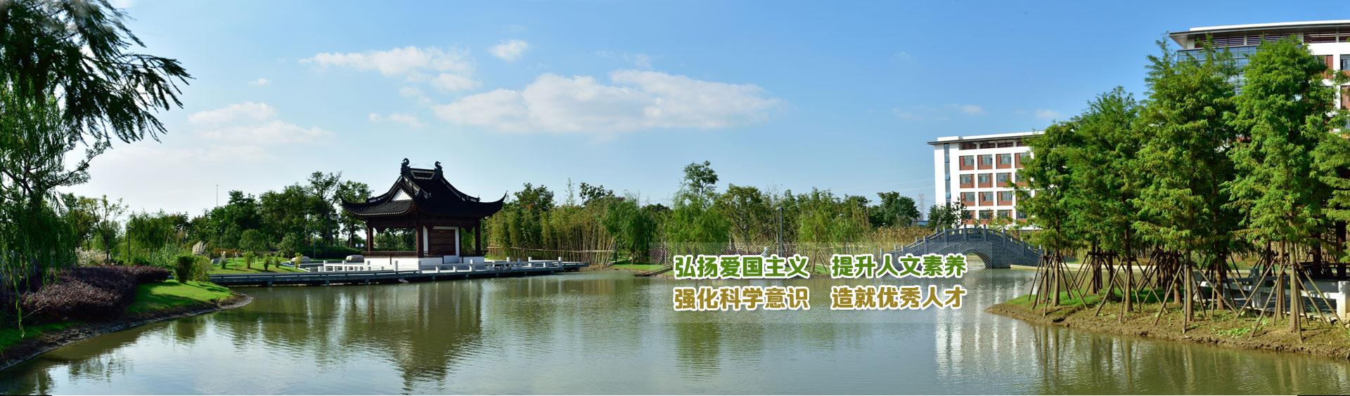 切图-banner2