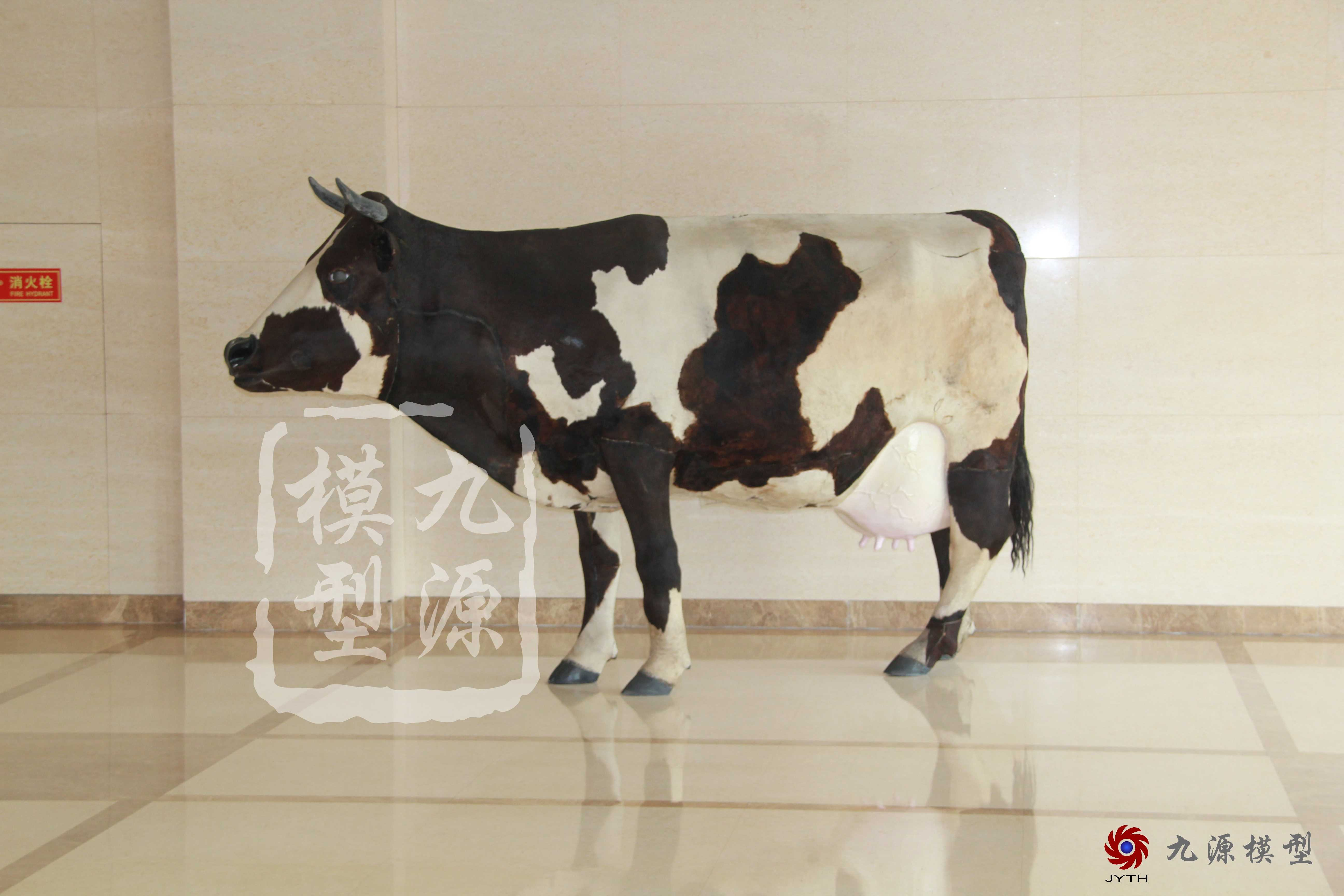未分类-奶牛装置多媒体互动-19