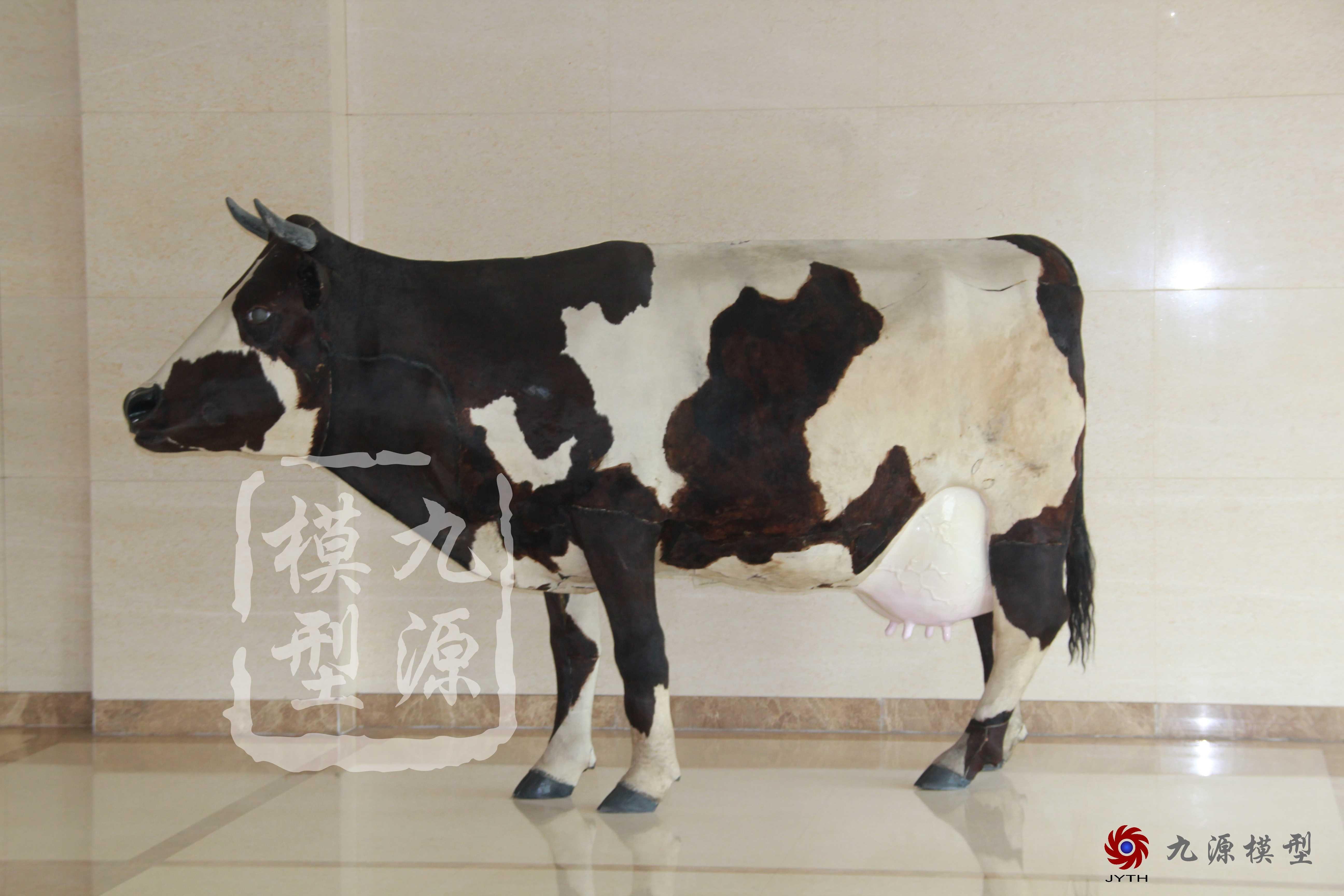 未分类-奶牛装置多媒体互动-20