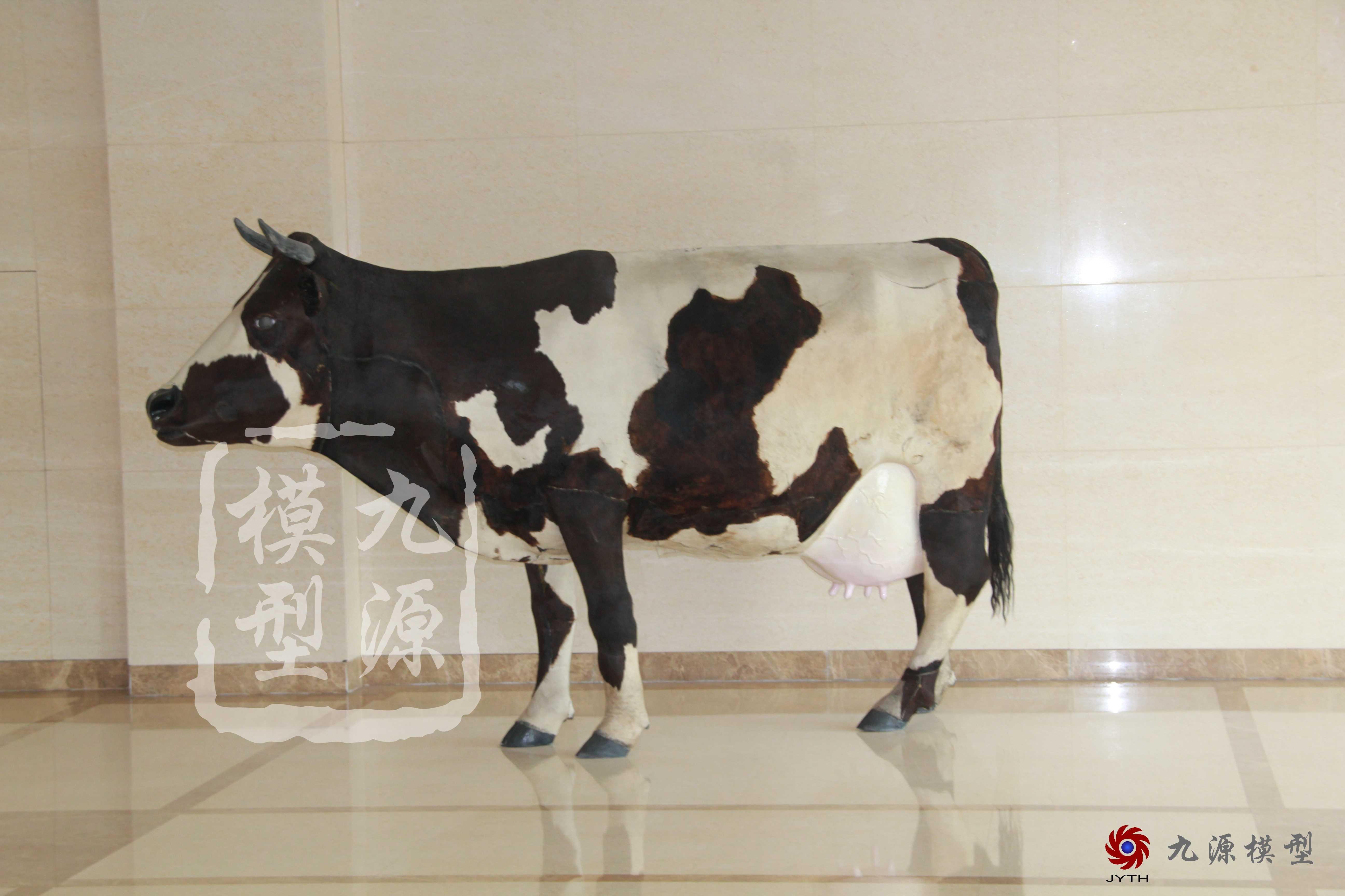 未分类-奶牛装置多媒体互动-21