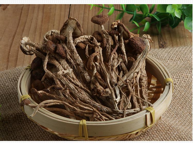 立袋装茶树菇-15