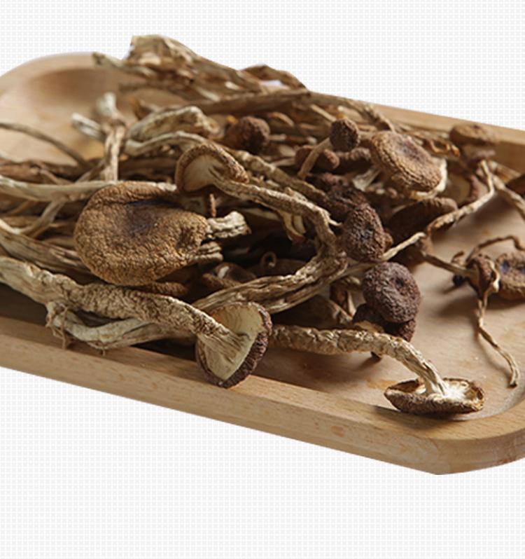 立袋装茶树菇-19
