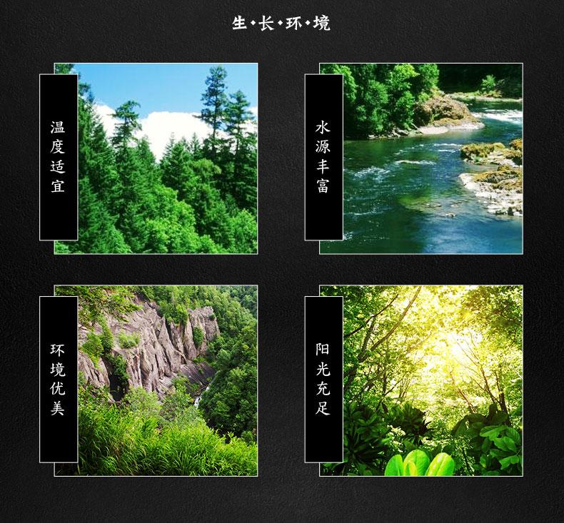 庆元白木耳-17