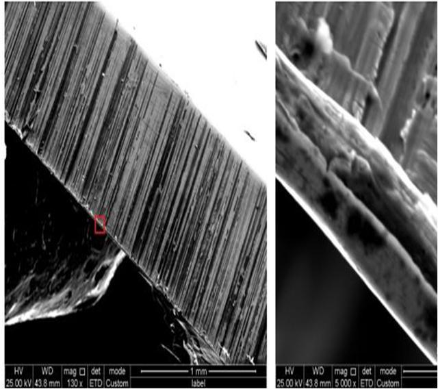 电子显微镜10